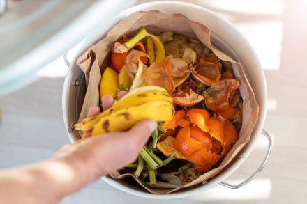 Food Waste Resized
